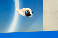 Olympics diving-16
