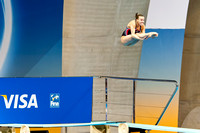 Olympics diving-15