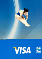 Olympics diving-13