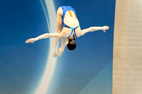 Olympics diving-12
